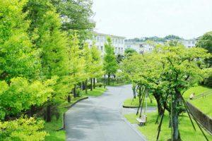 生前整理 高齢者向け住宅転居のお手伝い 横浜市
